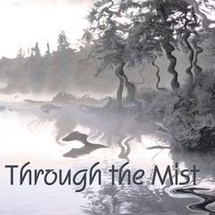 Through the Mist album cover