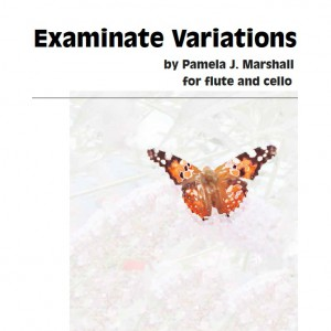 Examinate Variations Cover