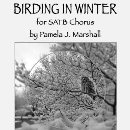 Birding in Winter, SATB, cover (square)
